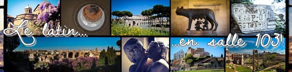 Salle 103 – Latin - Les langues et cultures de l'Antiquité – Collège de Vinci- Belfort